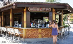 Disney's Polynesian Resort: Barefoot Pool Bar.