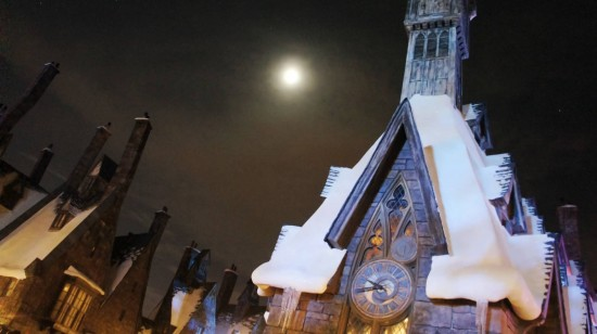 Wizarding World of Harry Potter at night: Hogsmeade and the Owlery.