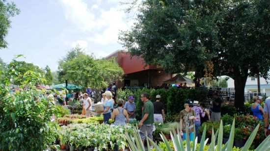 Winter Park Farmers Market.