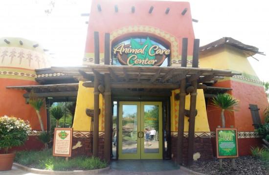Busch Gardens Tampa trip report - November 2013.