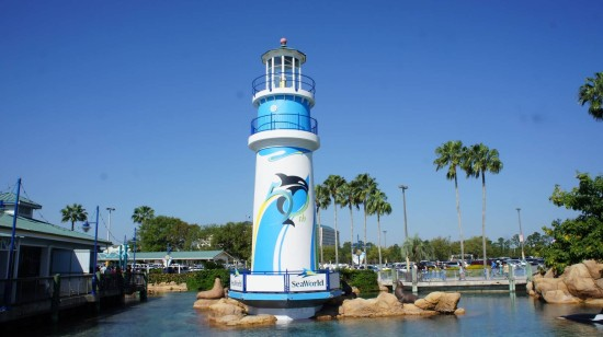 SeaWorld's Sea of Surprises.