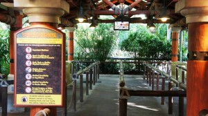 jurassic-park-river-adventure-queue-islands-of-adventure-813-oi
