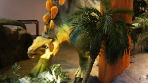 jurassic-park-discovery-center-universal-islands-of-adventure-055-oi
