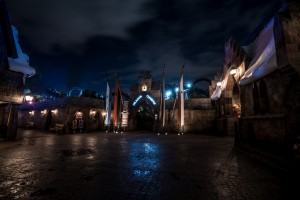 Dragon Challenge in The Wizarding World of Harry Potter - Hogsmeade at Universal Orlando Resort