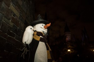 The Wizard World of Harry Potter - Hogsmeade.