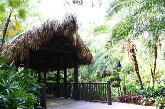 Discovery Cove Orlando: Cross the bridge to paradise.