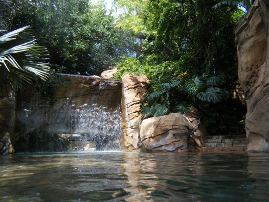 Discovery Cove Orlando: Entrance into the aviary from the river.