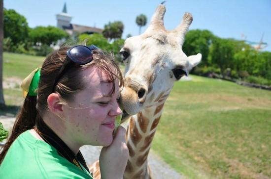 Photo Guide to Busch Gardens Tampa: Unique experiences.