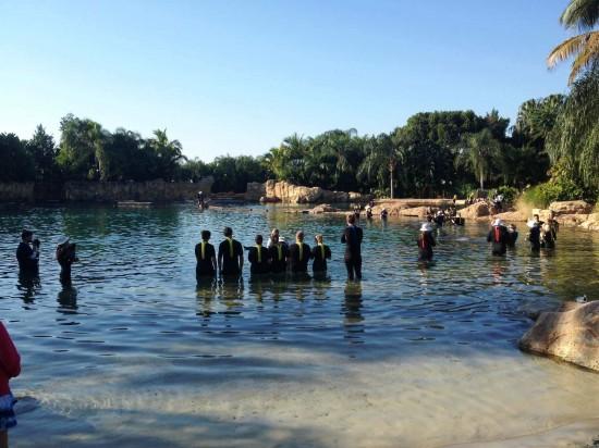Discovery Cove at SeaWorld Orlando.