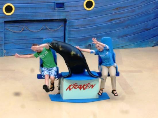 SeaWorld Summer Nights 2013.