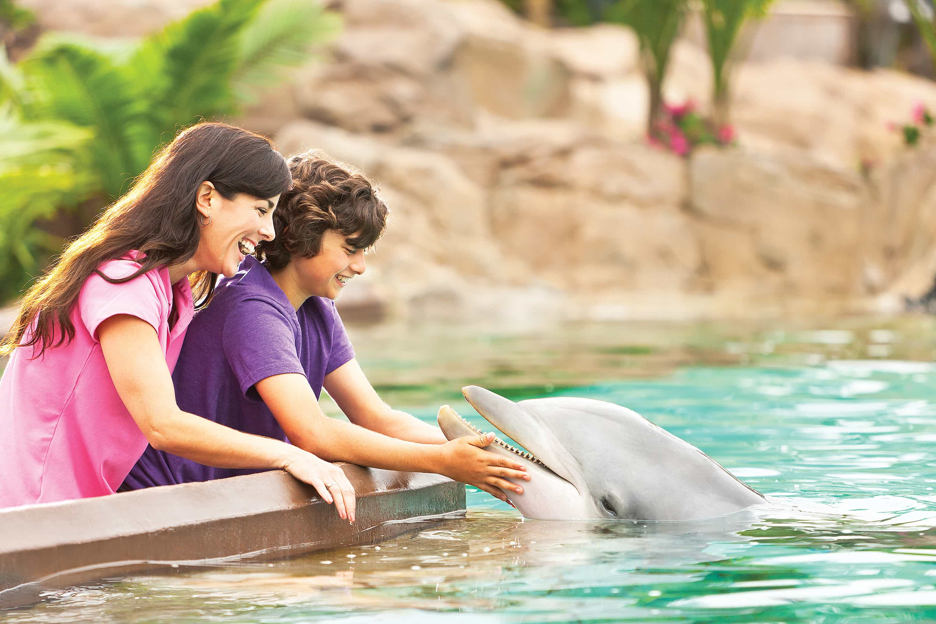 SeaWorld's 2015 Black Friday deals