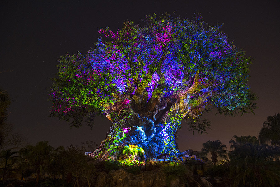 Disney awakens with six massive announcements