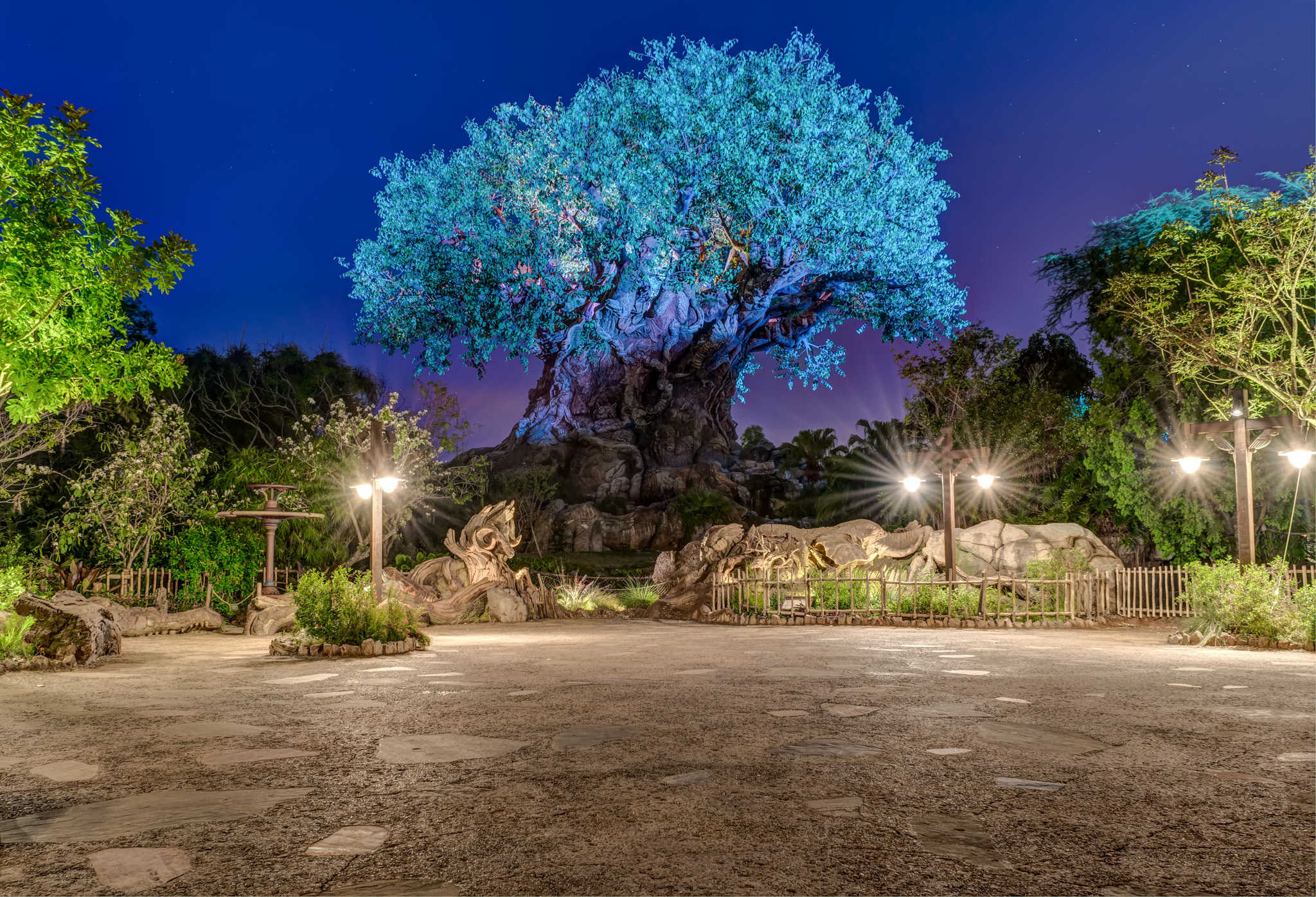 8 Unique Photos of an Empty Animal Kingdom at Night