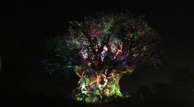 The Tree of - Nighttime Awakenings Disney's Animal Kingdom