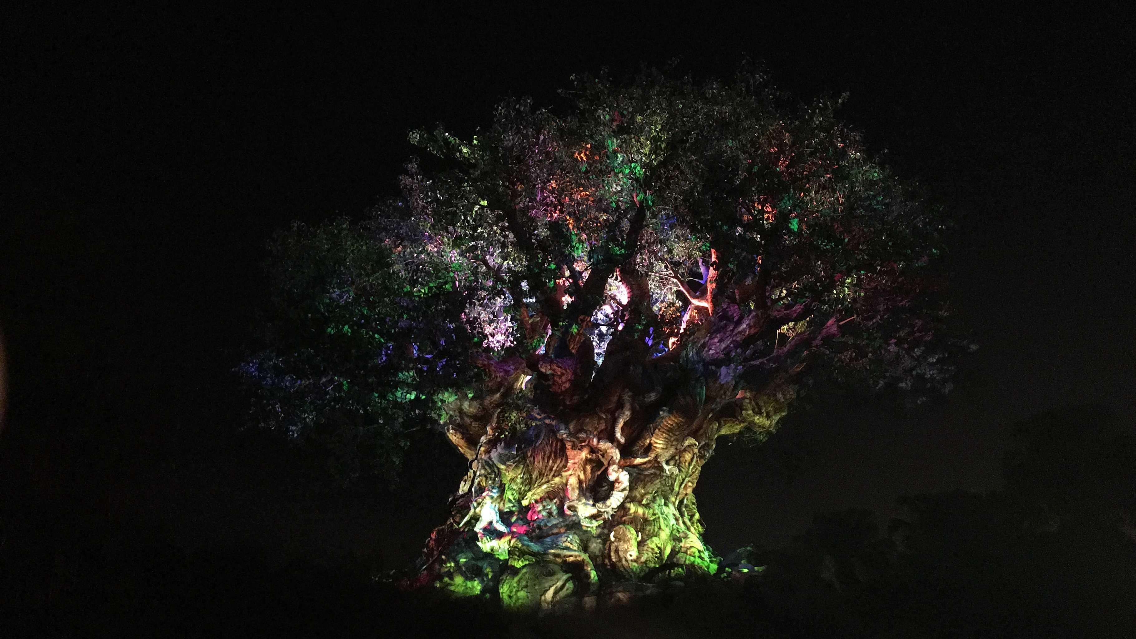 Disney's Animal Kingdom awakens after dark