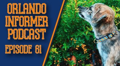 Orlando Informer Podcast Episode 61