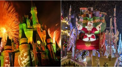 Walt Disney World Halloween & Christmas Parties