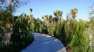 Cabana Bay Garden Walkway at Universal Orlando Resort
